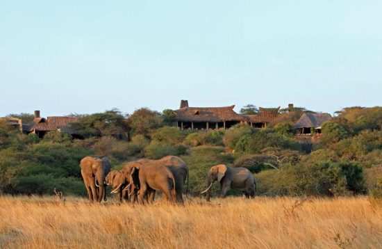 severin sea lodge y safari por autopista tsavo