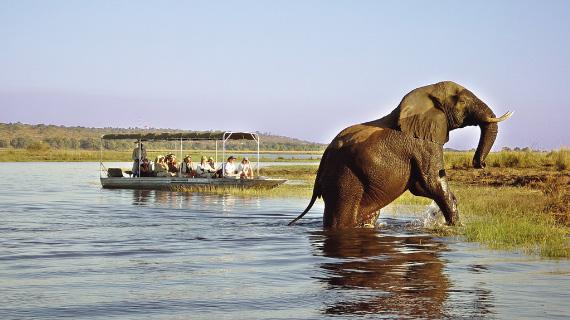 tour en botswana y zimbabue
