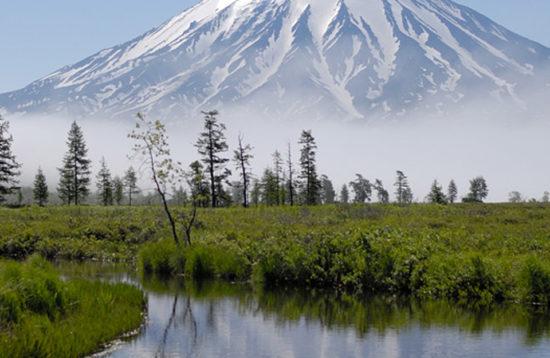 tours a kamchatka