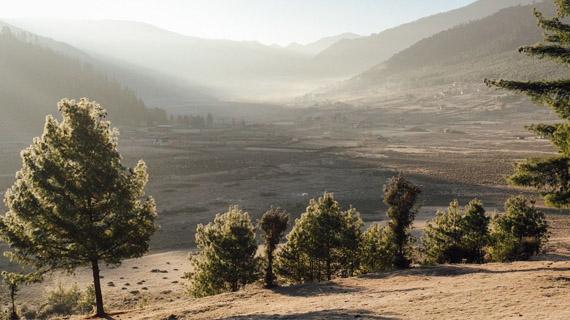 paseo por phobjikha valley